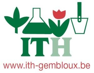 Logo simple ITH 2014